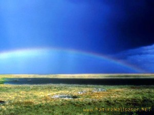 Landscape Rainbow Wallpaper