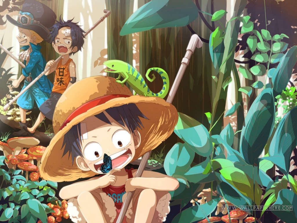 Monkey D Luffy Wallpaper