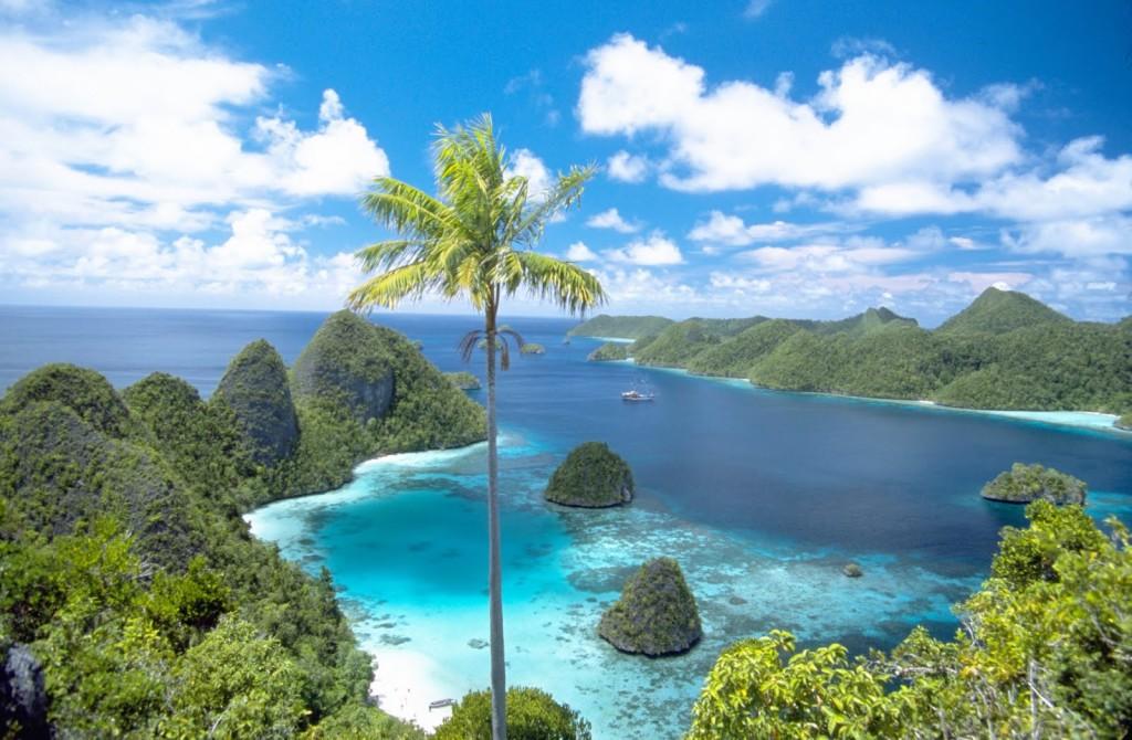 Raja Ampart Indonesian Papua