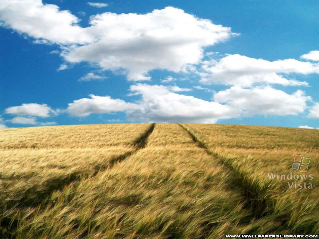 Vista Field Wallpaper
