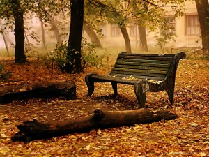 Nature Wallpaper Autumn Fall
