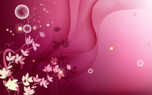 Pink Colour HD Wallpaper