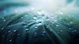 Amazing Water Drop Wallpaper