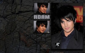 Free Adam Lambert Wallpaper