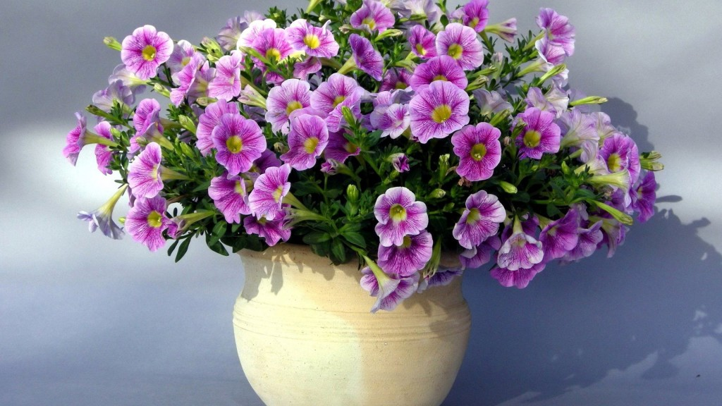 Purple Flowers Vase Wallpaper