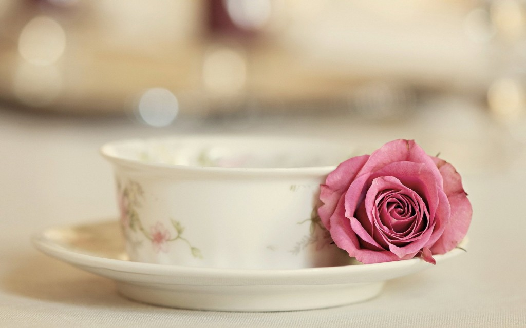 Rose With Tea Cup