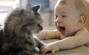 Funny Baby And Cat HD Wallpaper