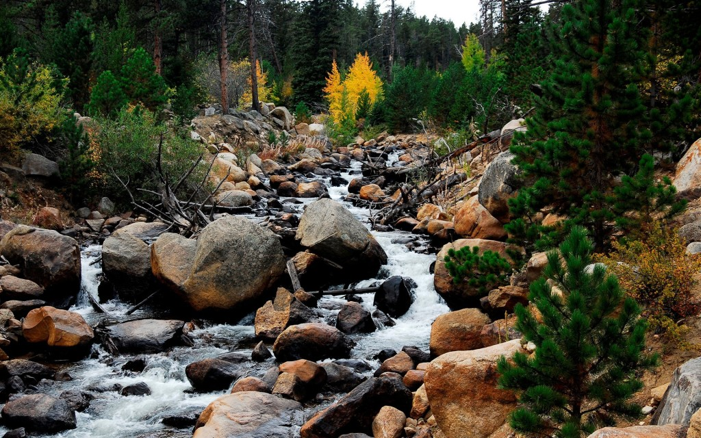 Rocky Mountain River Wallpaper
