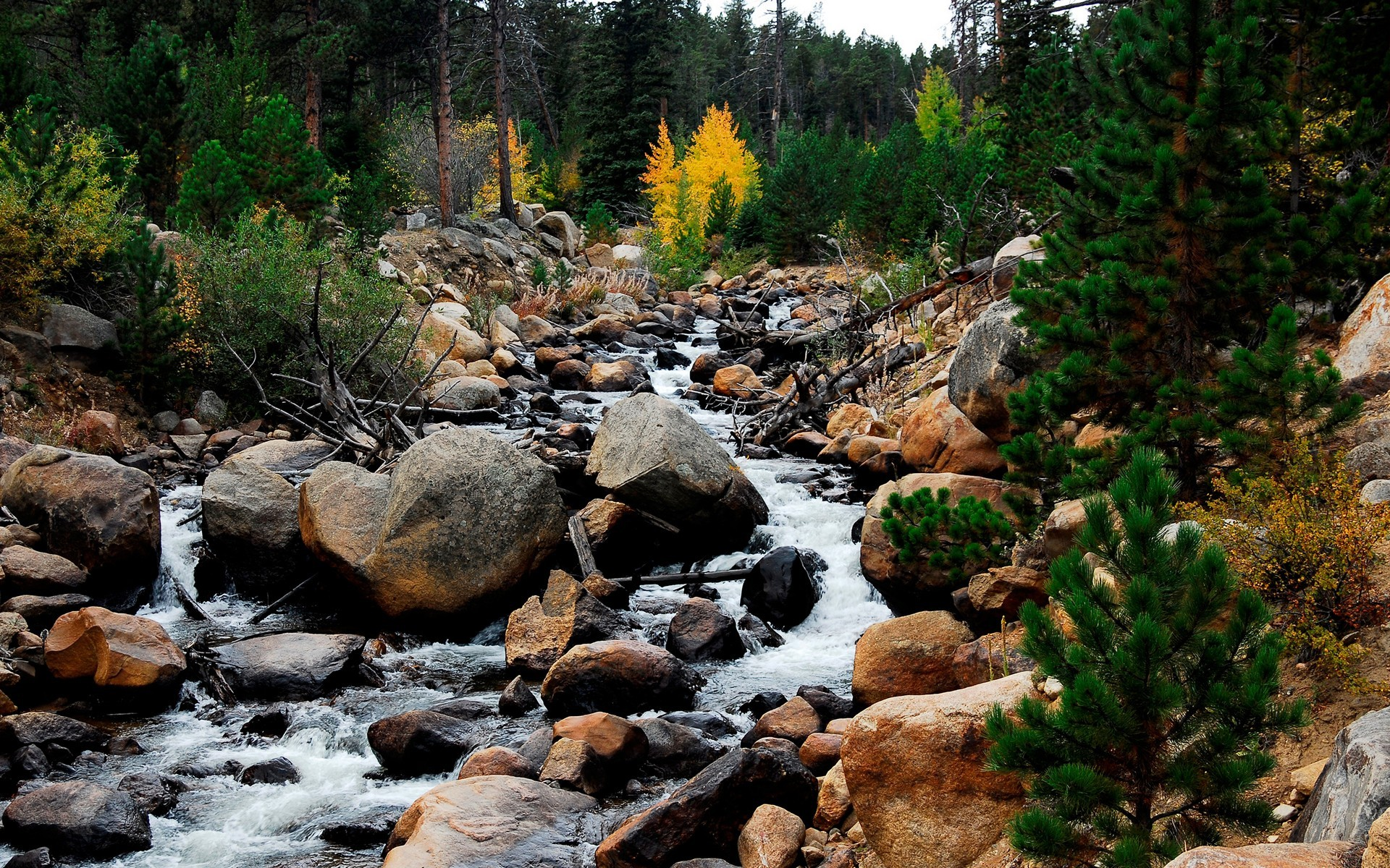 Description: Rocky Mountain River Wallpaper is a hi res Wallpaper for