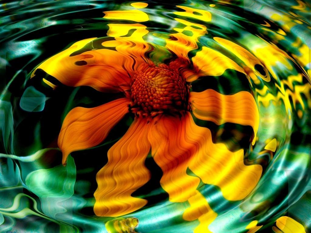 Sunflower in Water Wallpaper