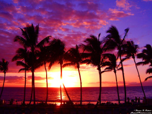 Sunset at Maui Hawaii Wallpaper