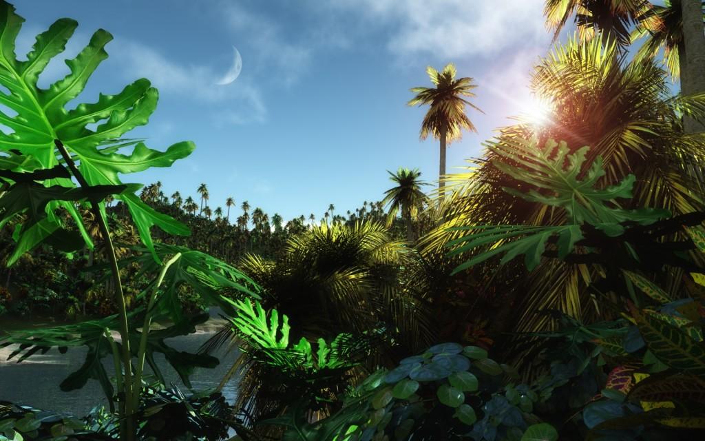 Tropic Jungle Wallpaper